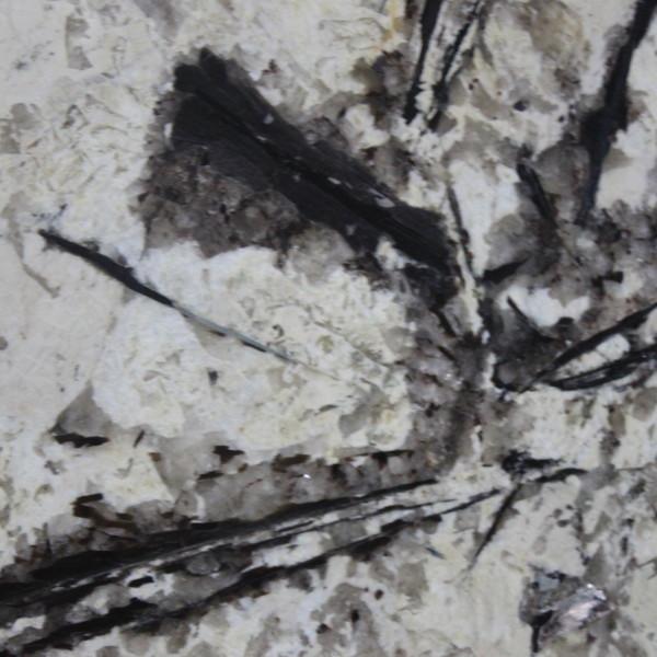Delciatus White Granite